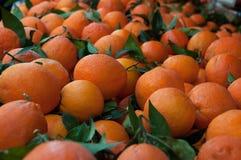 Un tas des oranges Image stock