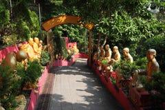 Un tempiale di 10000 Buddhas Fotografia Stock Libera da Diritti