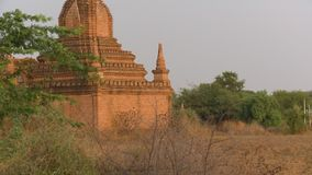 Un temple antique entouré par des buissons et des arbustes banque de vidéos