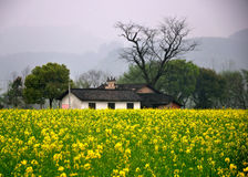 Un temple héréditaire dans Pingjiang Photo libre de droits