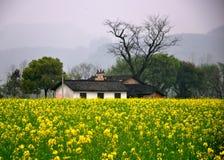 Un templo ancestral en Pingjiang Foto de archivo libre de regalías
