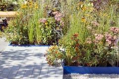 Un terrazzo di legno e un letto di fiore su un'area locale Progettazione moderna del giardino fotografia stock libera da diritti