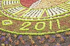 Un testo di 2011 in piante crescenti. Immagini Stock