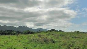 un timelap di 4 K della vista verde del paesaggio della campagna nordica della Spagna, colline coperte di erba, fondo della monta stock footage
