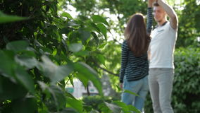 Un tipo con un ballo della ragazza nel parco sulla via archivi video