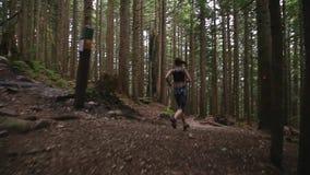 Un tir de cheminement d'une jeune femme caucasienne dans les vêtements de sport pulsant par la forêt à feuilles persistantes au-d banque de vidéos