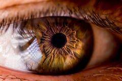 Un tiro del primer del ojo Foto de archivo libre de regalías