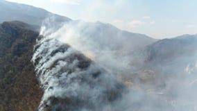 Un tiro vertical aéreo que muestra el bosque en humo grueso metrajes