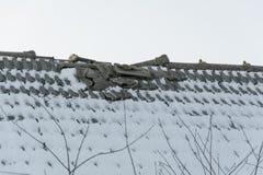 Un toit carrelé cassé Photographie stock