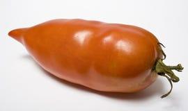Un tomate tiene gusto de la paprika Foto de archivo libre de regalías