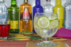 Un tonico del gin fotografia stock