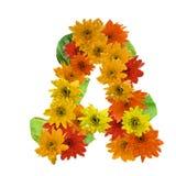 Un tono caldo di alfabeto del fiore isolato su fondo bianco Fotografia Stock