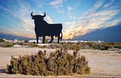 Un toro in Spagna Fotografie Stock Libere da Diritti
