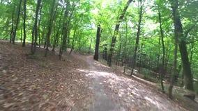 Un tour de vélo rapidement par la forêt clips vidéos