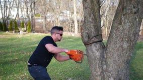 Un trabajador corta peligroso en un árbol con la motosierra mientras que bajo rama grande ALT2 almacen de metraje de vídeo
