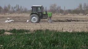Un tracteur vert labourant un champ banque de vidéos