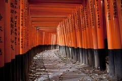 Un traforo di 10000 cancelli di torii Fotografia Stock