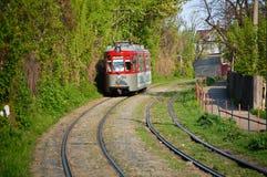 Un tram rouge de ville d'Iasi en Roumanie Photographie stock libre de droits