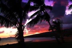 Un tramonto tropicale fotografia stock libera da diritti