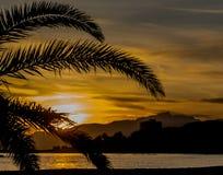 Un tramonto in una spiaggia di Cambrils Visione della palma immagine stock libera da diritti
