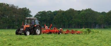 Un trattore che funziona un campo di erba Fotografia Stock