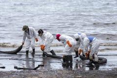 Un travailleur dans le biohazard adapte au boom de retenue d'huile usagée comme cleani Photos libres de droits
