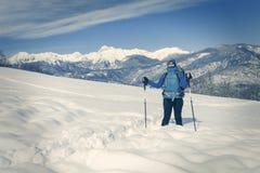 Un trekking della viandante nel paesaggio di inverno fotografia stock libera da diritti
