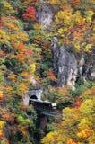 Un treno che esce da un tunnel su un ponte sopra la gola di Naruko con il fogliame variopinto di autunno Fotografia Stock