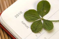 Un trifoglio dei cinque fogli e nuovo anno. Gennaio 2010. Fotografie Stock