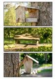 Un trittico delle scatole di uccello immagine stock libera da diritti
