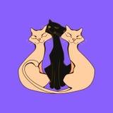 Un trío de amantes de gatos bizqueó con placer Fotografía de archivo libre de regalías