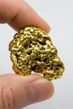 Un Troy Ounce California Gold Nugget fotografia stock libera da diritti