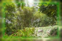 Un tumulto dell'olio confuso della spazzola della pianta in una scatola di vetro Fotografie Stock Libere da Diritti