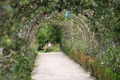 Un tunnel des fleurs Image libre de droits
