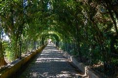 Un tunnel verde che avanza nella distanza, giardino di Alhambra, ottobre 2016, Spagna Fotografia Stock