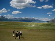 Un turista cammina lungo una pista nella steppa mongola immagine stock