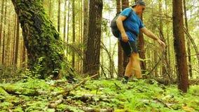 Un turista con una mochila está caminando a través del bosque