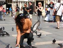 Un turista della signora che alimenta i piccioni a San Marco Fotografie Stock