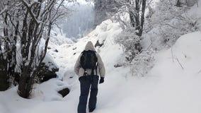 Un turista en el bosque del invierno almacen de video