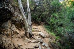Un turista que camina viaje a la cascada de Caledonia cerca de Platres, Chipre Imagenes de archivo