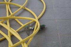 Un tuyau d'arrosage pour l'arrosage Photographie stock