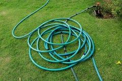 Un tuyau vert se trouvant au sol herbeux, une fin vers le haut de l'image d'un tuyau d'arrosage, tube en caoutchouc pour des usin photographie stock