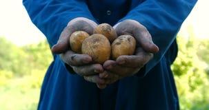 Un type de portrait un agriculteur dans un chapeau de paille, dans la chemise de robe longue creuse une pomme de terre clips vidéos