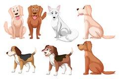 Un type différent de race de chien illustration libre de droits