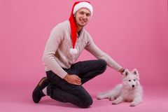 Un type frottant un samoyed menteur sur un fond rose Photos stock