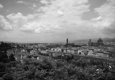 Un uccello sopra Firenze Fotografie Stock Libere da Diritti