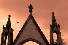 Un uccello sorvola un cimitero a Leopoli, Ucraina immagine stock libera da diritti
