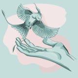 Un uccello vola alla mano delle persone Immagine Stock Libera da Diritti