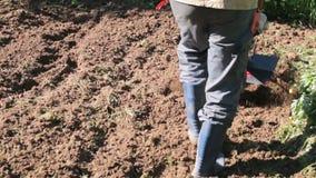 Un uomo è un agricoltore in un'area suburbana, un orto, aratri la terra con un coltivatore, un aratro manuale del motore, argilla stock footage