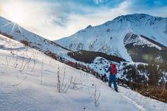 Un uomo è impegnato nello skituring sullo snowboard spaccato L'alba è soleggiata nelle montagne fotografia stock